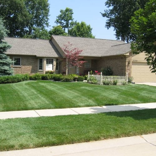 Best Lawn Service Livonia