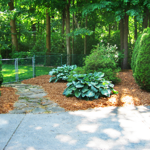 A picture of a freshly mulched flower bed without weeds