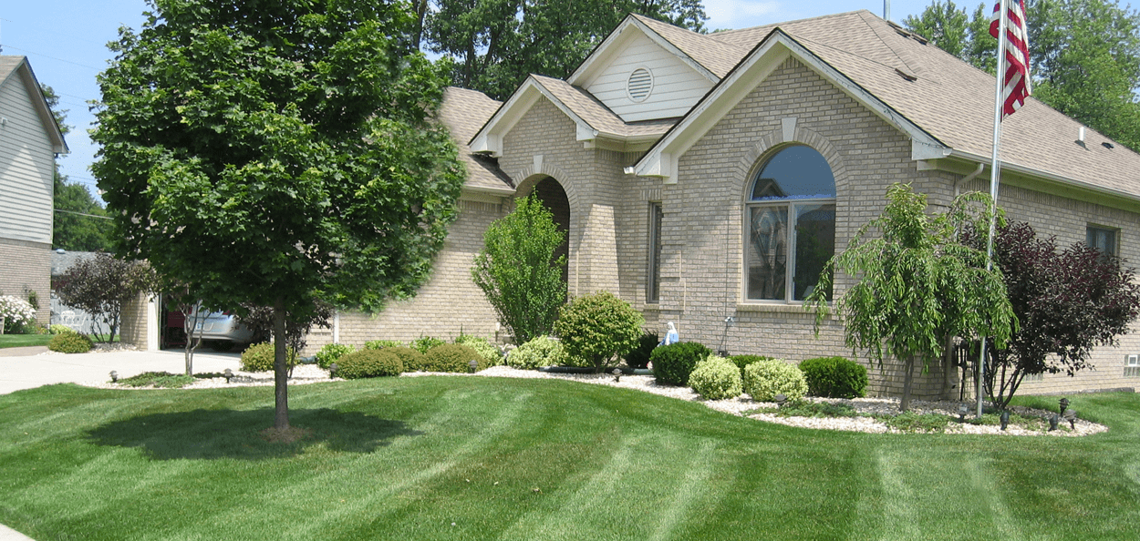 RS Lawn Care Landscaping Lawn Care