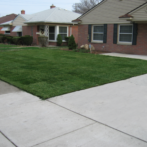 The after picture of what a difference sod can do for your curb appeal.
