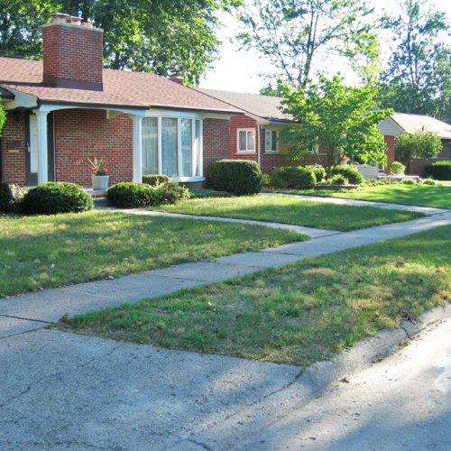 A picture of a weedy lawn before sod was installed