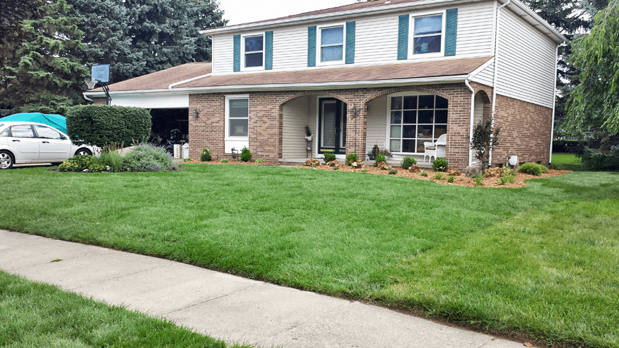 An After Picture Of New Sod, Mulch And Landscaping