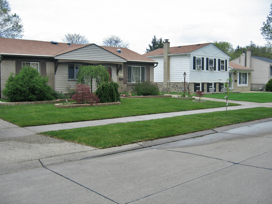 A Picture Where A Lawn Had Kentucky Bluegrass Sod Installed