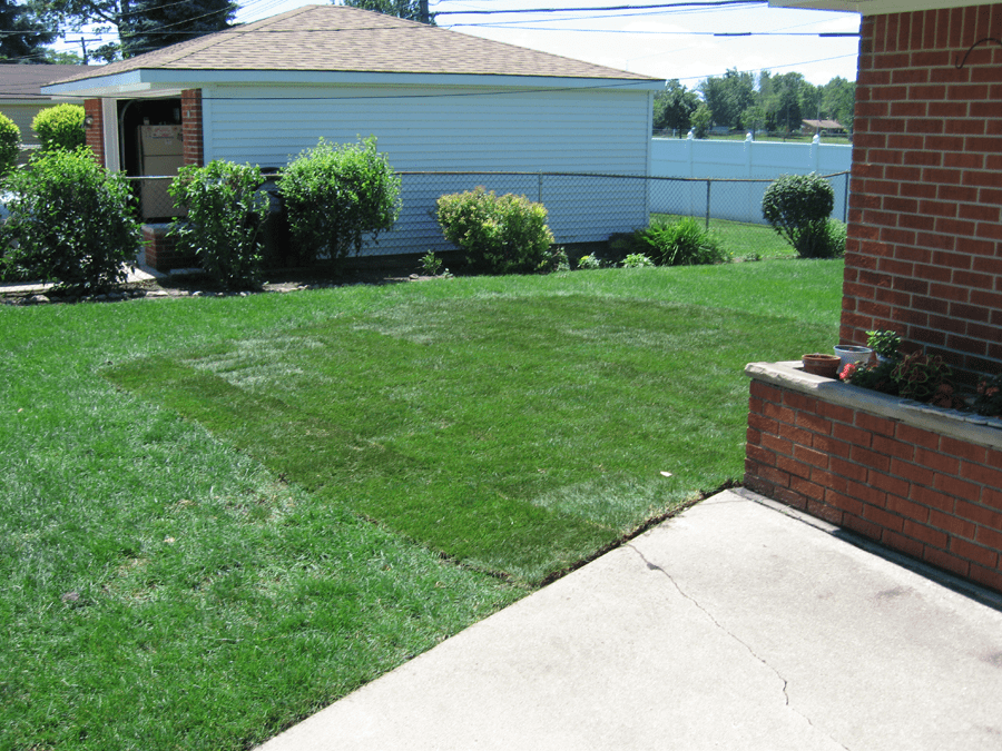 A Picture Of A Newly Sodded Portion Of A Lawn
