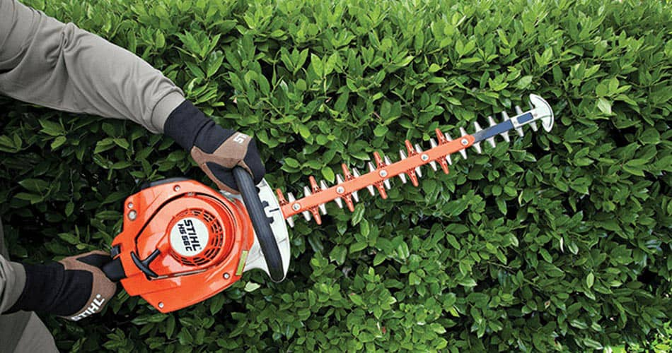 This is a image of RS Lawn Trimming a bush